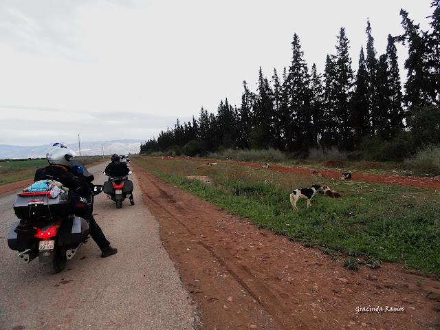 Marrocos 2012 - O regresso! - Página 4 DSC04932