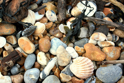 Stones on Pett Beach in East Sussex