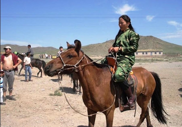 Cool Animals Pictures Mongolian Horses Cool Pictures Part 2