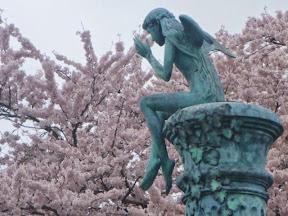 会場の勝山駐車場は桜満開 UP