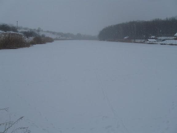 бугайка ставок зимой