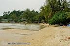 Beach in front of Coconut Resort