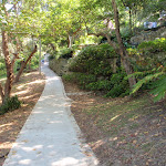 Path at the north western side of Cremorne Point (259817)