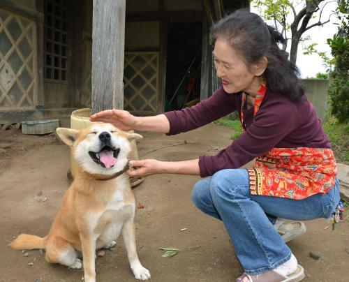 竜巻で小屋ごと行方不明の犬「ワン太郎」の表情が本当に嬉しそうで愛らしいアホアホ可愛いなワラタw