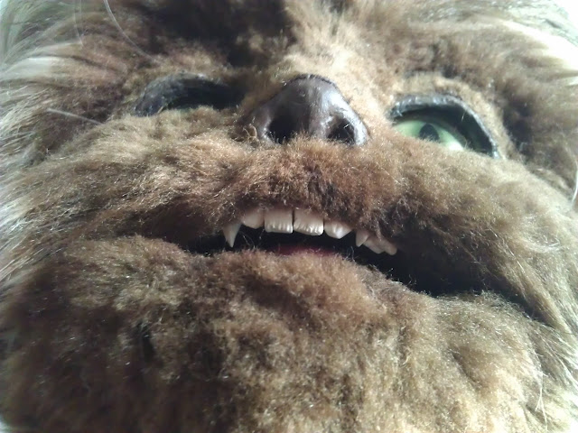 A closeup of Papa Fuzzy's teeth.