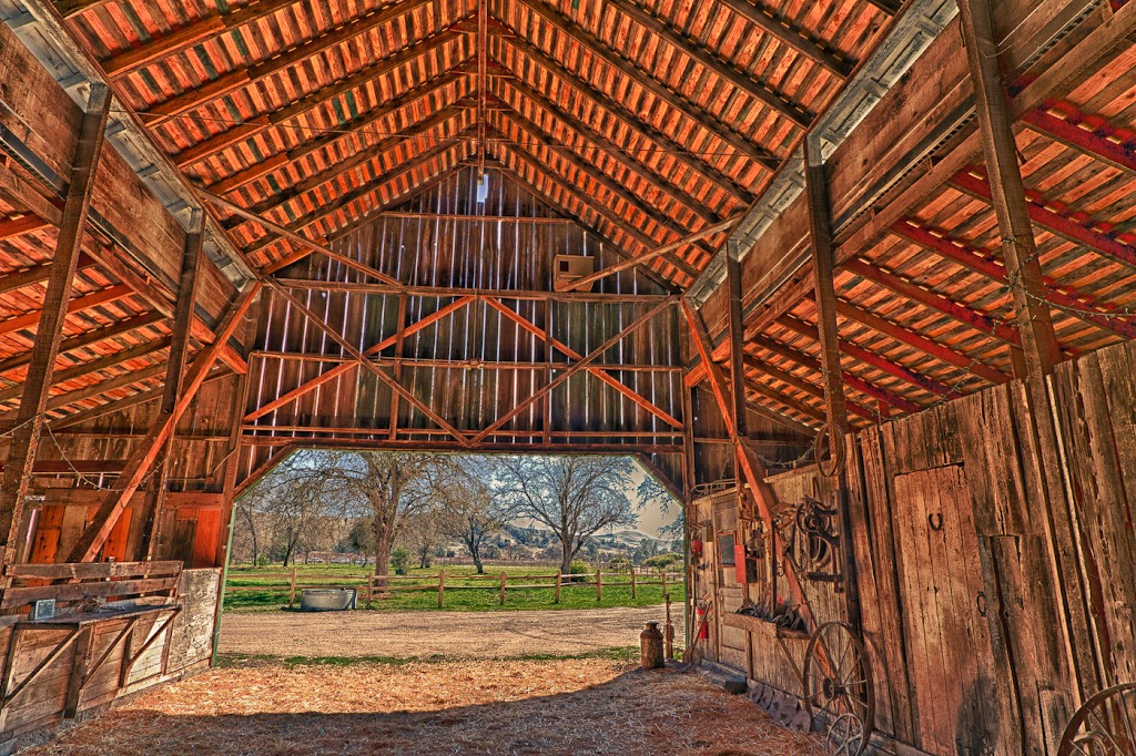 """Barn View"" by Bruce Straits"