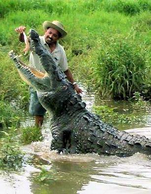 Questões e Fatos sobre Crocodilianos gigantes: Transferência de debate da comunidade Conflitos Selvagens.  - Página 2 1229721537_CrocCrop%25202