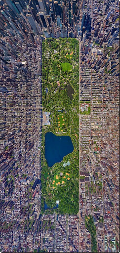 The world from above - Central Park, New York City.jpg