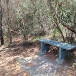Bench beside track (78907)