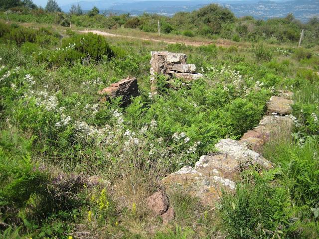 Cabana del turó de la Torre