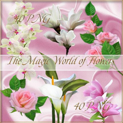 Волшебный мир цветов - клипарт в PNG