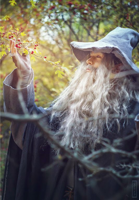 Gandalf from The Hobbits