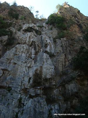 Descenso de 80 metros en Huaxtla