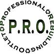 Professional R