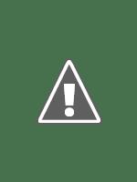 Poster Goodnight, Mr. Foot