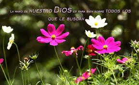 La mano de nuestro Dios es para bien sobre todos los que le buscan