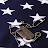 Mandy G avatar image
