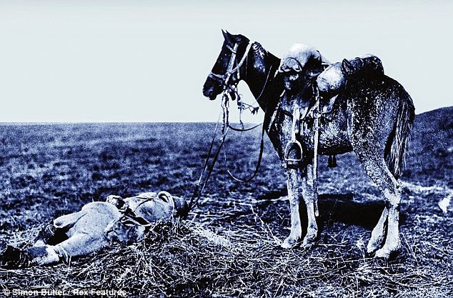 Por muitos anos o grande público desconheceu a realidade dos cavalos de guerra, em especial daqueles que participaram da Primeira Guerra Mundial.