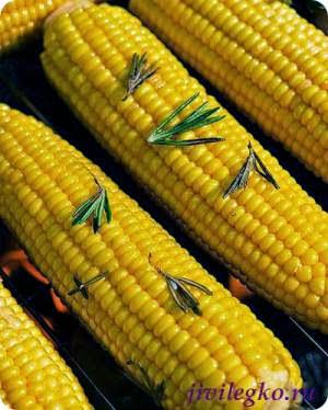 poleznye-svoystva-kukuruzy