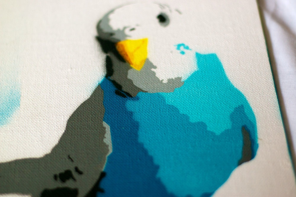 Budgie stencil close up