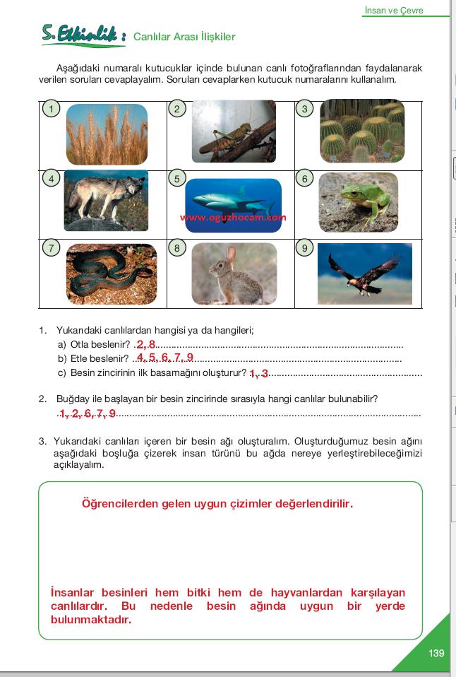 sayfa+139+-+5.+etkinlik.png (646×958)