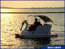 大鵬灣、夕陽、天鵝船