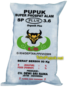 Pupuk SP 36