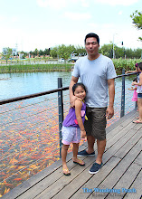 Thumbnail image for Fish Feeding in Solenad, Nuvali