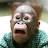 Jonathan Gilstrap avatar image