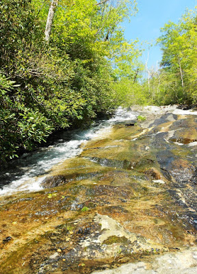 Chestnut Cove Branch Falls
