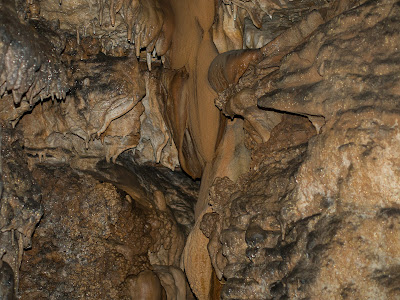 Formacions litogèniques a la Cova Gran