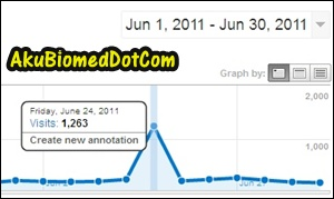 Trafik bulan Jun melonjak naik bukti tip blogging terbaik