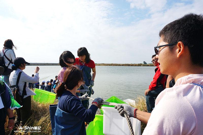 台江國家公園-漁塭體驗8