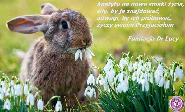 fund+easter1