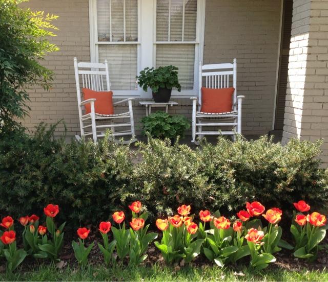 Grandma Fifi Independent Costco And Aldi Blog Front Porch