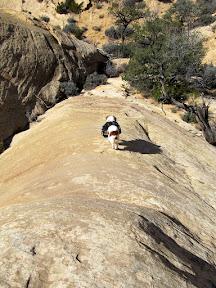 Torrey descending a sandstone fin