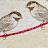 Cara Stull avatar image