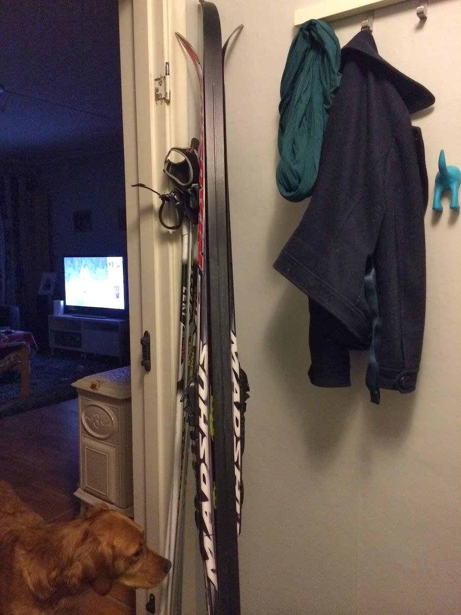 Ski i gangen