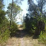 Track near Green Point (403090)