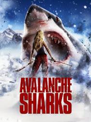 Avalanche Sharks - Cá mập núi tuyết