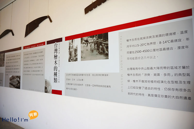 台中龍井景點,希諾奇台灣檜木博物館-7