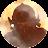 snowstorm8943 avatar image