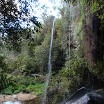 Waterfall next to Lyrebird Dell (186771)