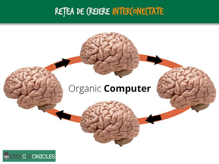 organic computer network