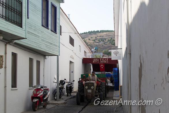 Talay şarap fabrikasına üzüm getiren traktör