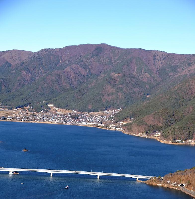 Kawaguchia