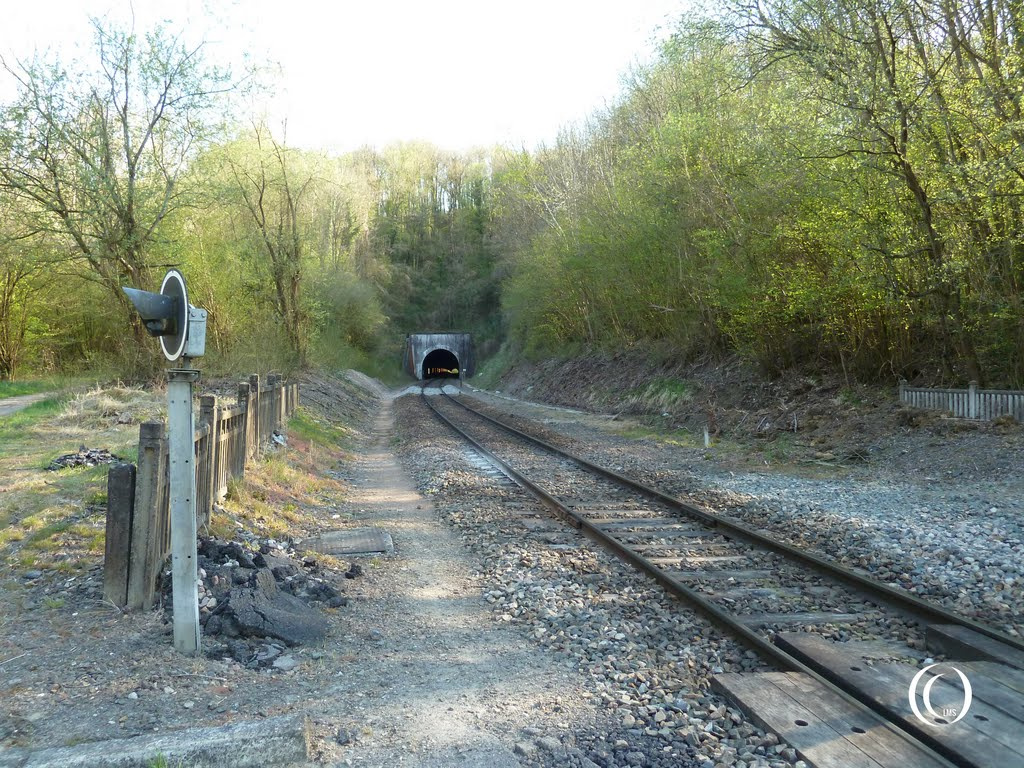 Railway tunnel and track at margival france