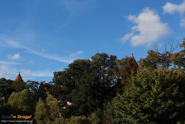 Bytowski zamek otoczony drzewami