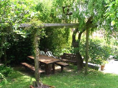 Jardinitis p rgolas de madera - Plantas trepadoras para pergolas ...