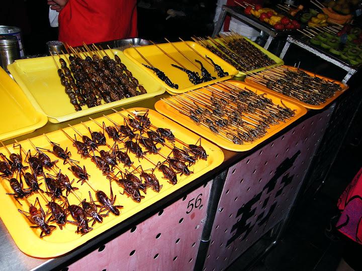 ¿Qué ver en Beijing? Mercado de insectos de Wangfujing